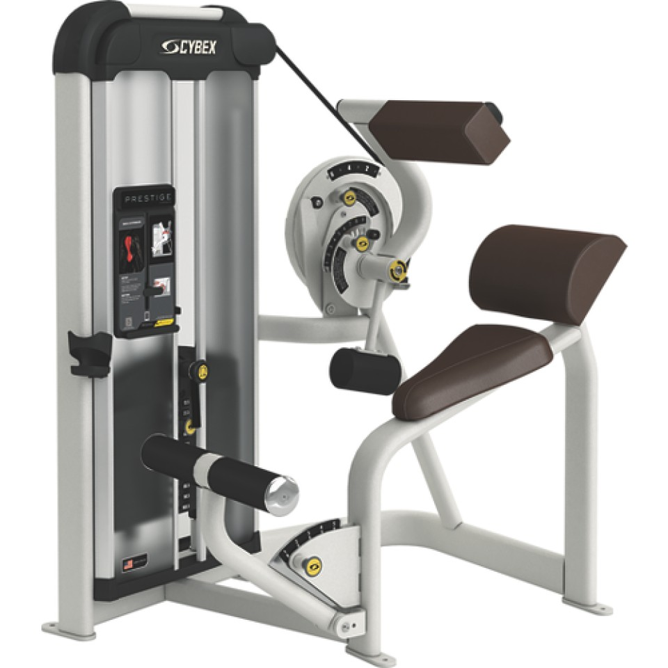 Cybex Prestige Strength VRS Back Extension