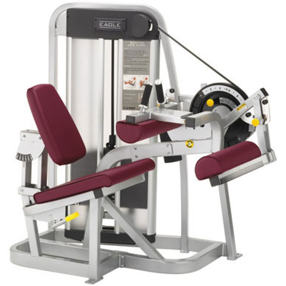 Cybex Treadmill Workouts: Cybex Eagle - Seated Leg Curl/SRL
