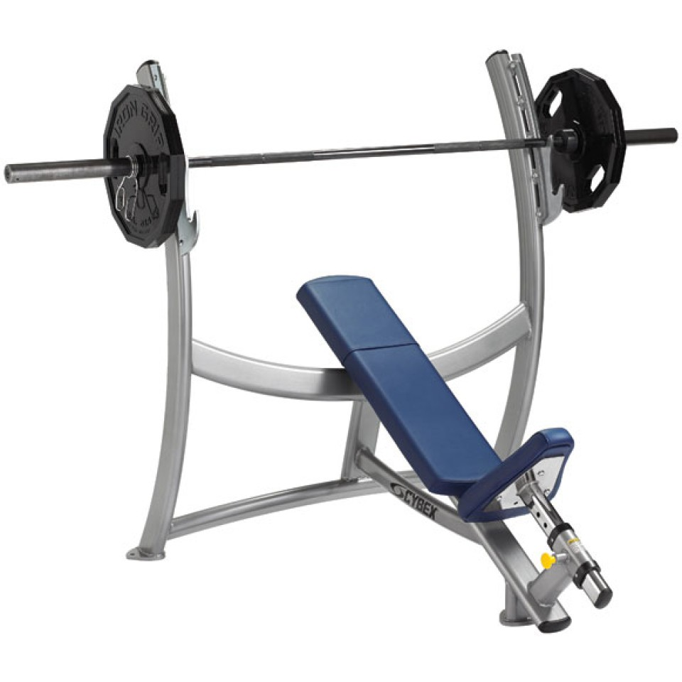 Cybex Incline Weight Bench