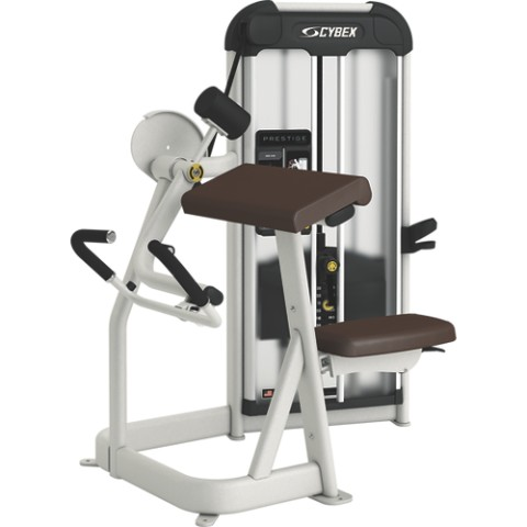 Cybex Prestige Arm Curl Machine