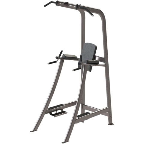 Cybex Dip Chin and Leg Raise Machine