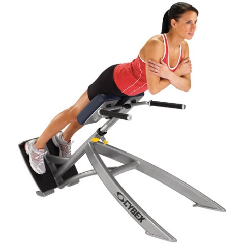 Cybex 45 Degree Back Extension