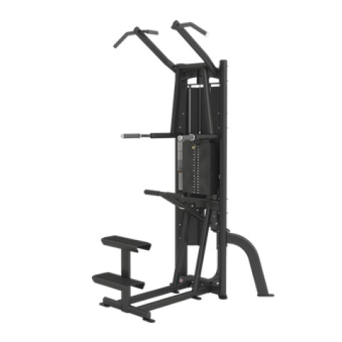 Cybex Assist Chin Dip