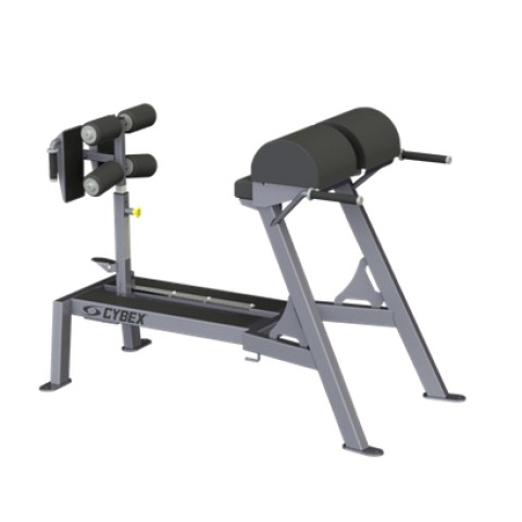 Big Iron Glute Ham Machine from Cybex