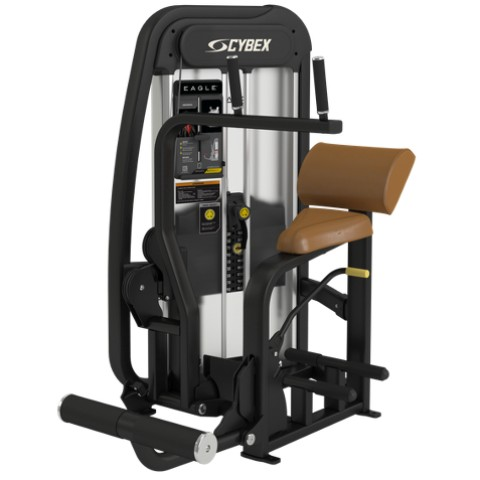 Cybex's Eagle NX Ab Machine