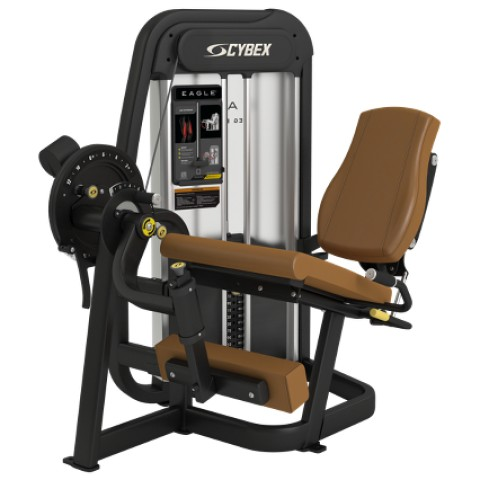 NX Eagle Leg Extension from Cybex