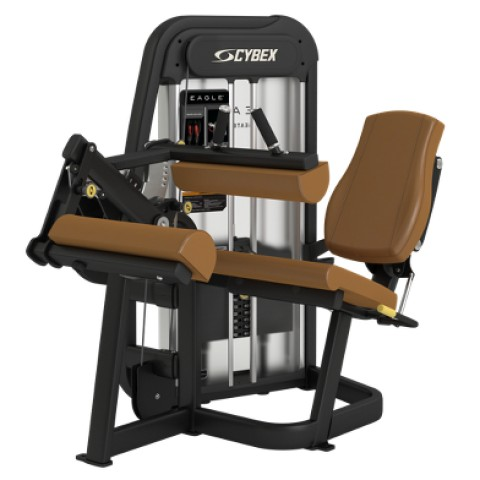 Cybex Seated Leg Curl
