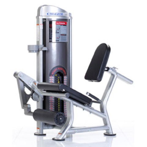 Leg Extenstion from CalGym